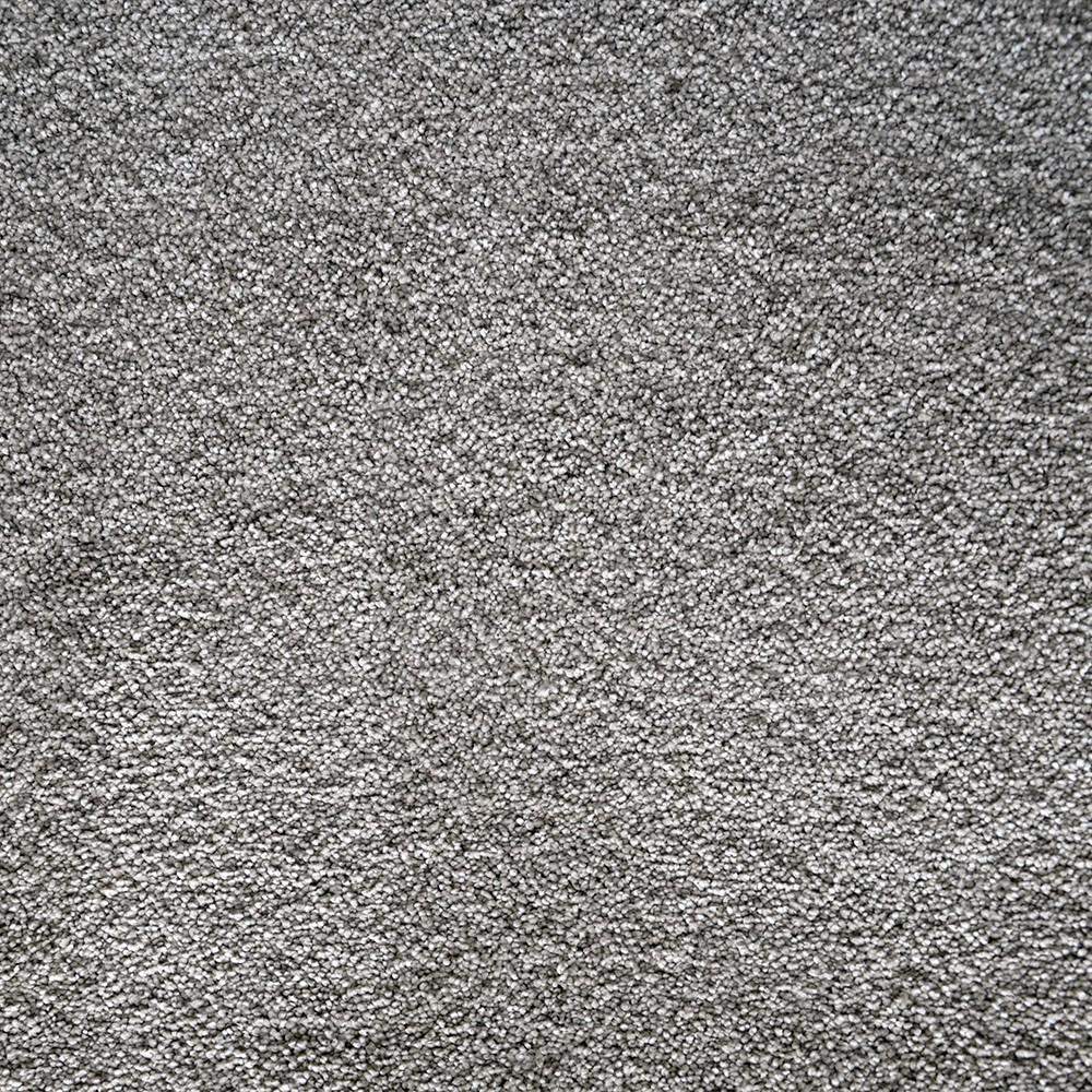 Fast Performer - Color Hallet Texture 12 ft. Carpet