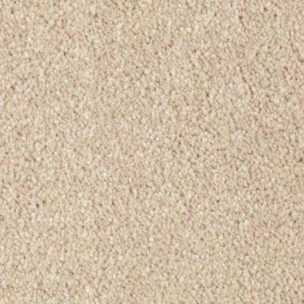 Opulent II (S) - Color Blessing Texture 12 ft. Carpet