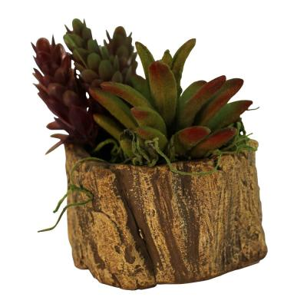 3 in. x 3 in. x 2.25 in. Hazel Ceramic Driftwood Stump Log Planter