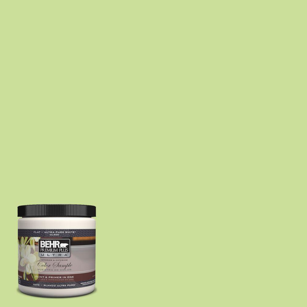 420a 3 Key Lime Matte Interior Exterior Paint And Primer In One Sample