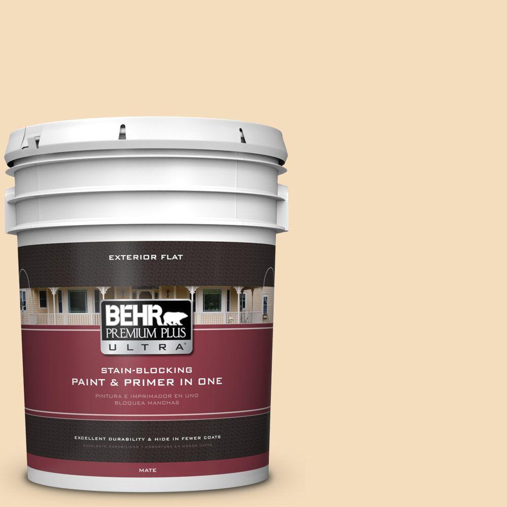 BEHR Premium Plus Ultra 5-gal. #YL-W1 Spinning Silk Flat Exterior Paint