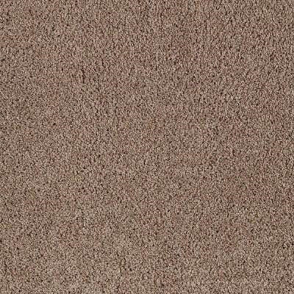 Lifeproof Carpet Sample Barons Court I Color Weathered