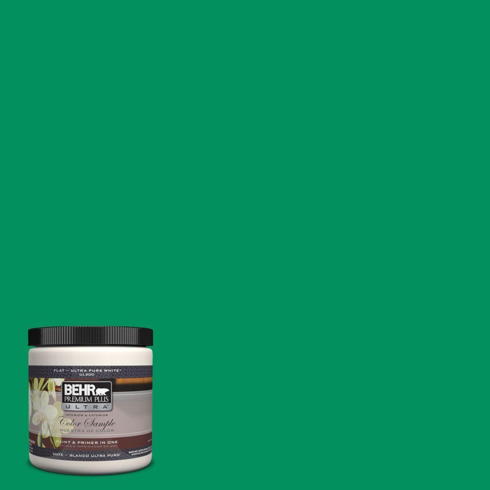 8 oz. #470B-6 Emerald Lake Interior/Exterior Paint Sample