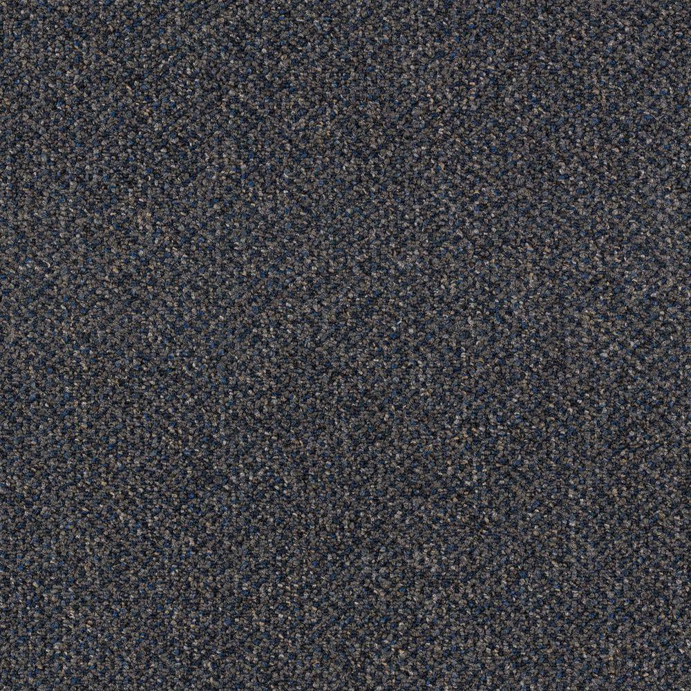 Trafficmaster Carpet Sample Social Network I Color