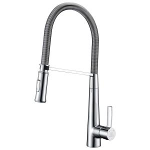 Apollo Single-Handle Pull-Down Sprayer Kitchen Faucet in Polished Chrome