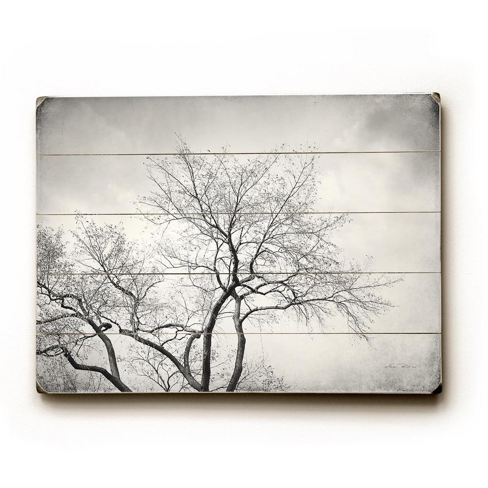 "14 in. x 20 in. ""10,000 Views"" by Eva Ricci ""Planked"