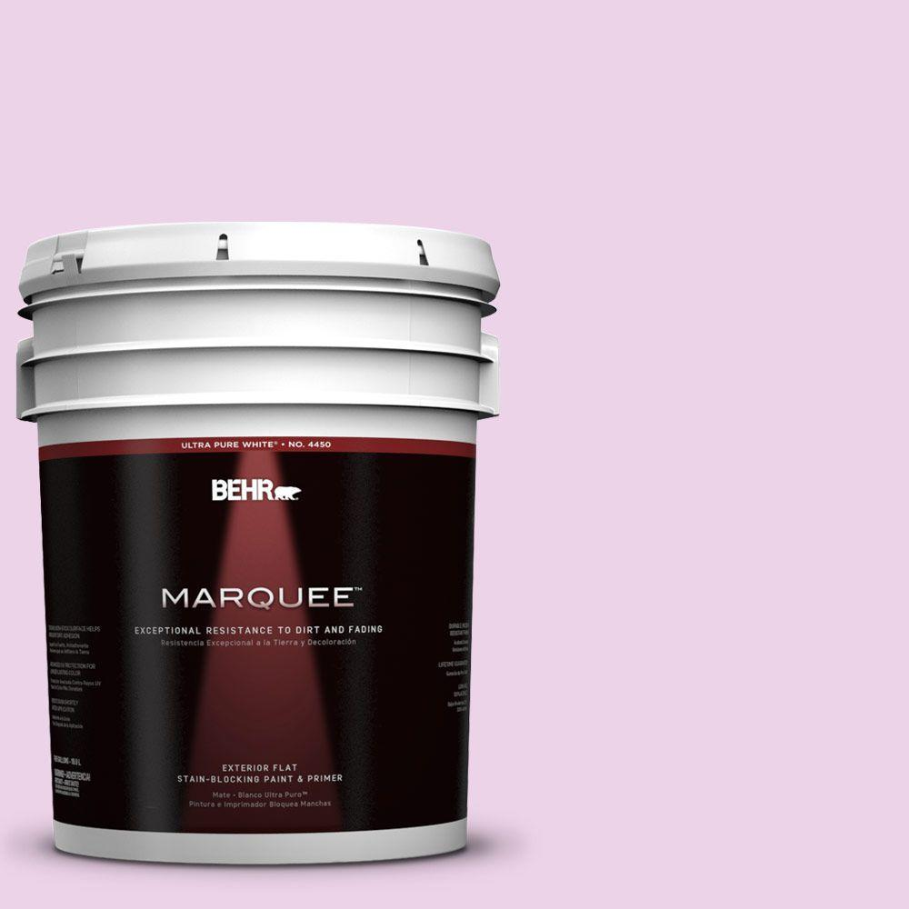 5-gal. #670A-2 Champagne Elegance Flat Exterior Paint