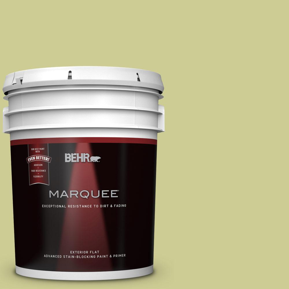 400d 4 Corn Husk Green Flat Exterior Paint And Primer In One