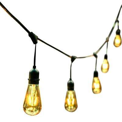 48 ft. 24 Oversized Edison Light Bulbs Black/Gold All Weather LED String Light