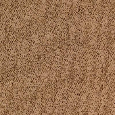 Lifeproof Lower Treasure Color Polished Copper Pattern 12 Ft Carpet 0547d 35 12 The Home Depot