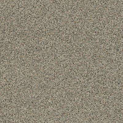 Madeline II - Color Bear Tracks Texture 12 ft. Carpet
