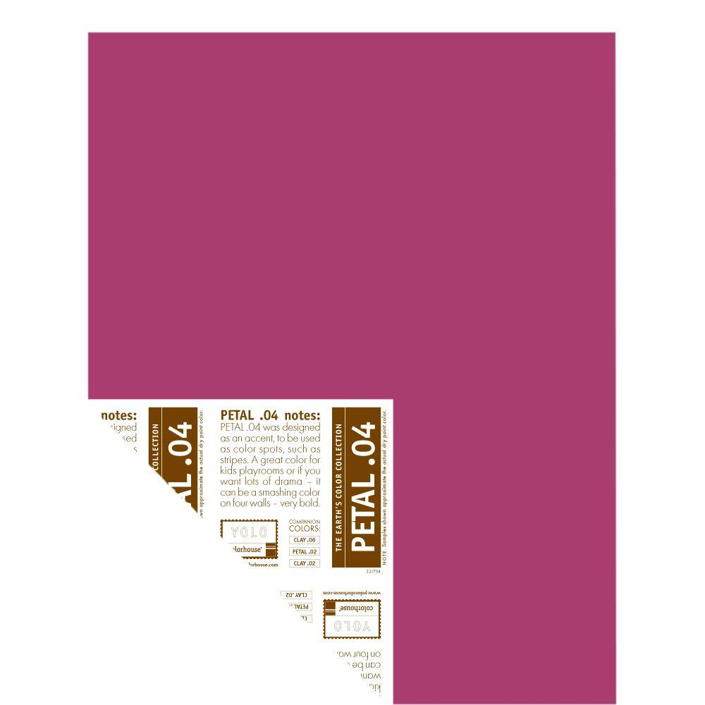 YOLO Colorhouse 12 in. x 16 in. Petal .04 Pre-Painted Big Chip Sample