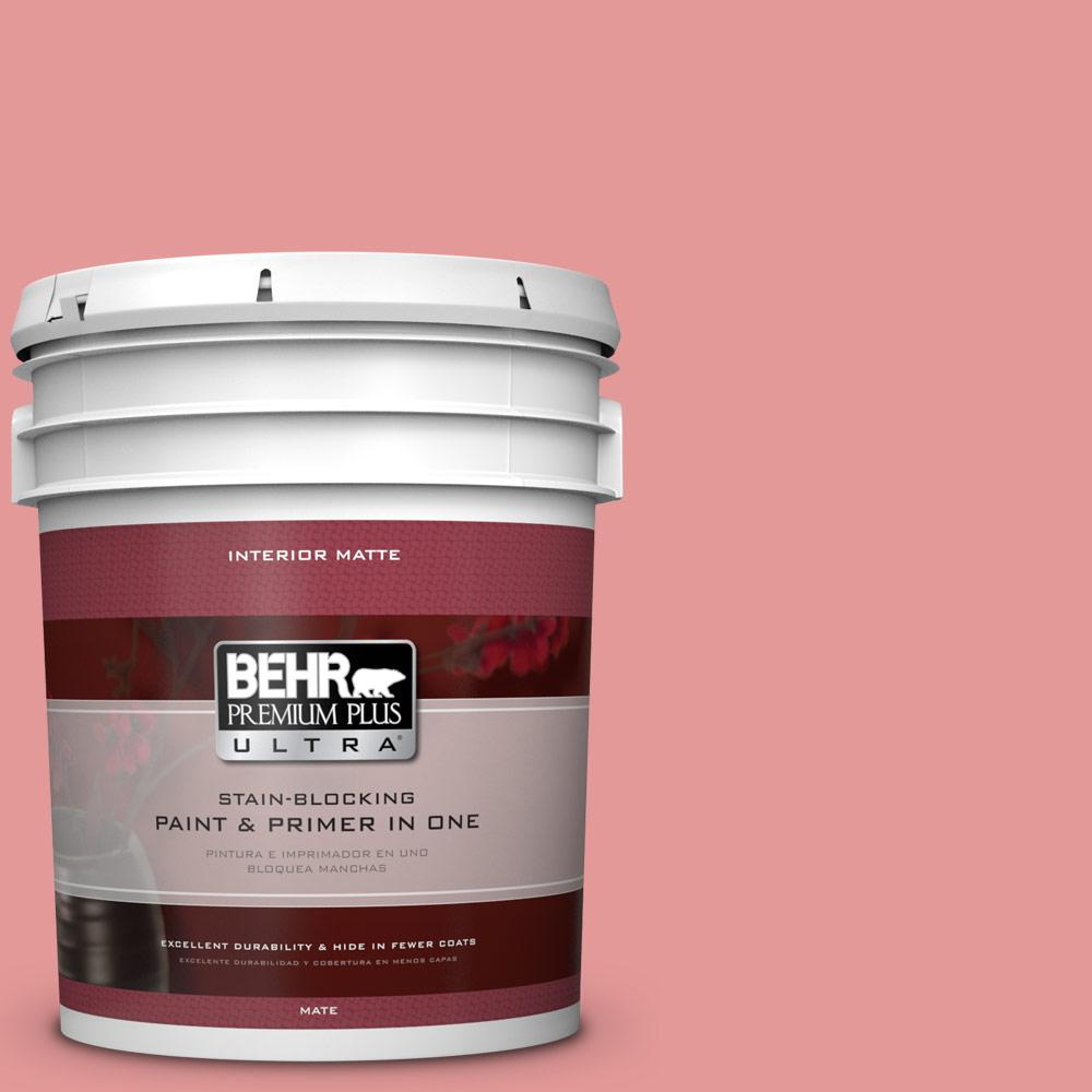 5 gal. #M160-4 She Loves Pink Matte Interior Paint