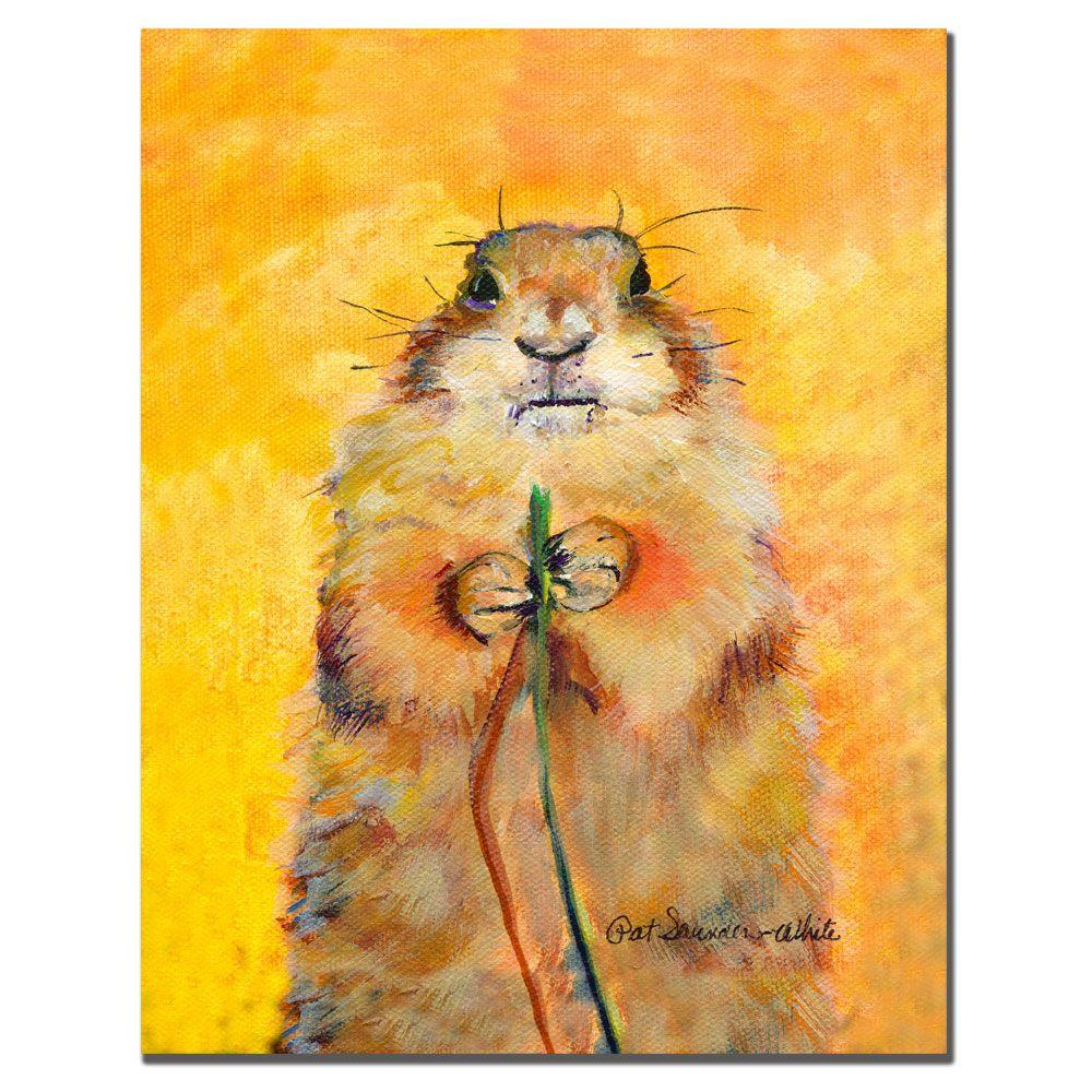 trademark fine art 35 in x 47 in target canvas art ps033 c3547gg