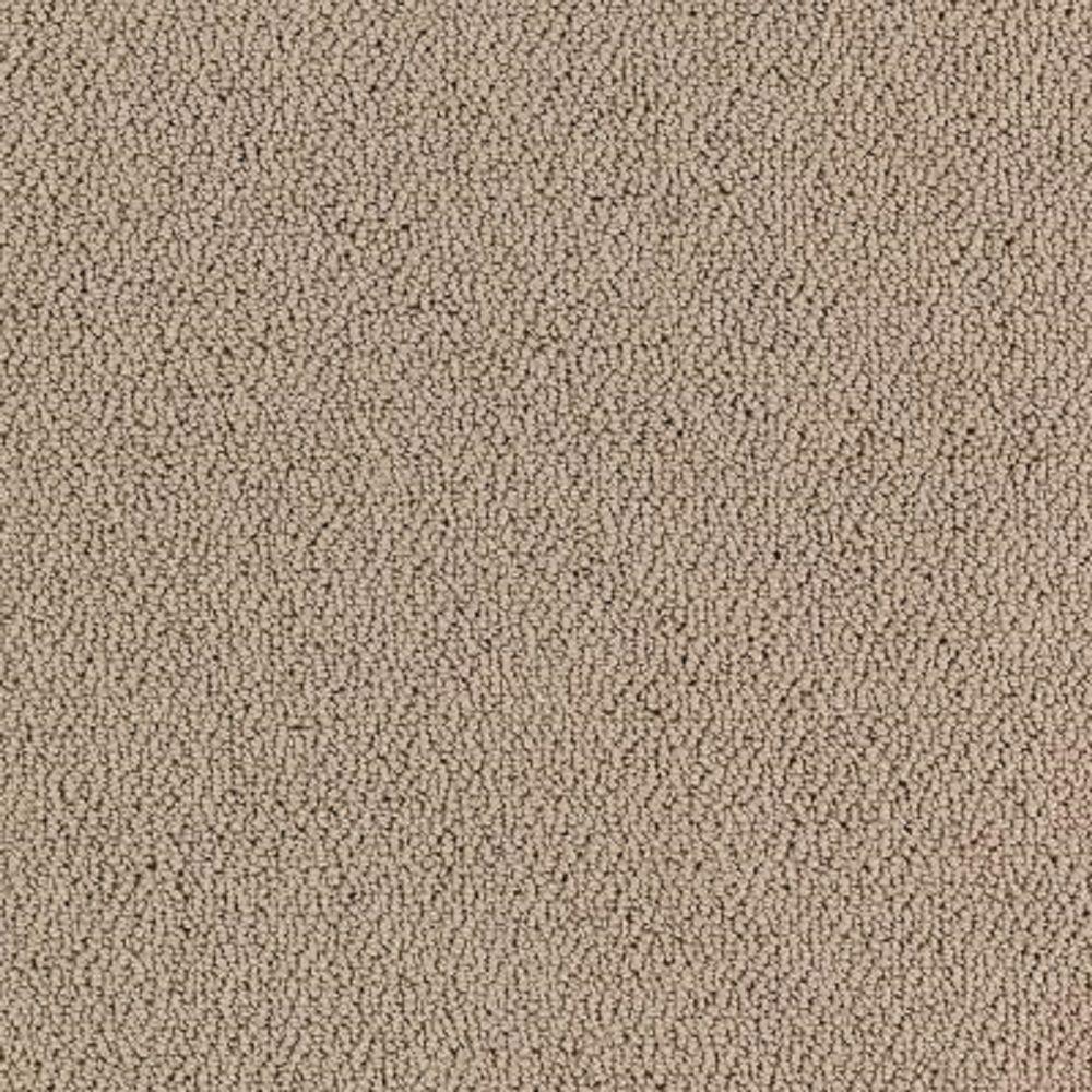 Carpet Sample - Lower Treasure - Color Sea Pearl Loop 8 in. x 8 in.