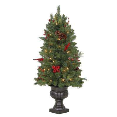 Pre-Lit Winslow Fir Potted Artificial Christmas Tree with 196 Tips and - 5.5 Ft And Under - Artificial Christmas Trees - Christmas Trees