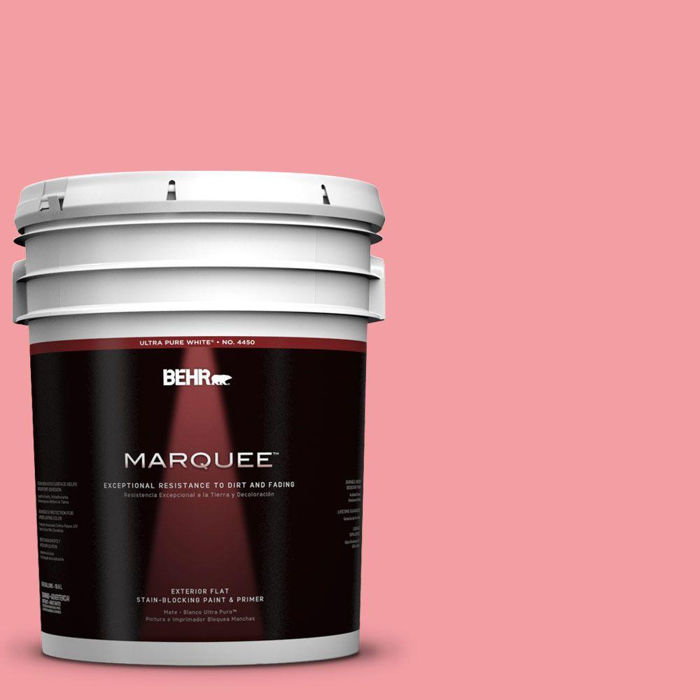 5-gal. #140B-4 Island Coral Flat Exterior Paint