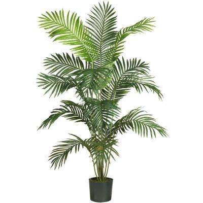 5 Ft. 6 In.. Paradise Palm Silk Tree