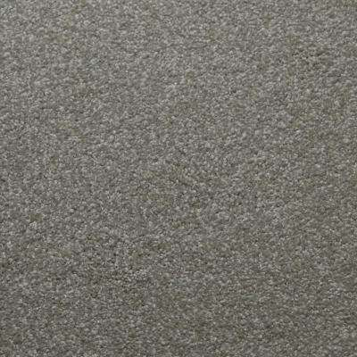 Carpet Sample - Sweet Dreams II - Color Balance Texture 8 in. x 8 in.