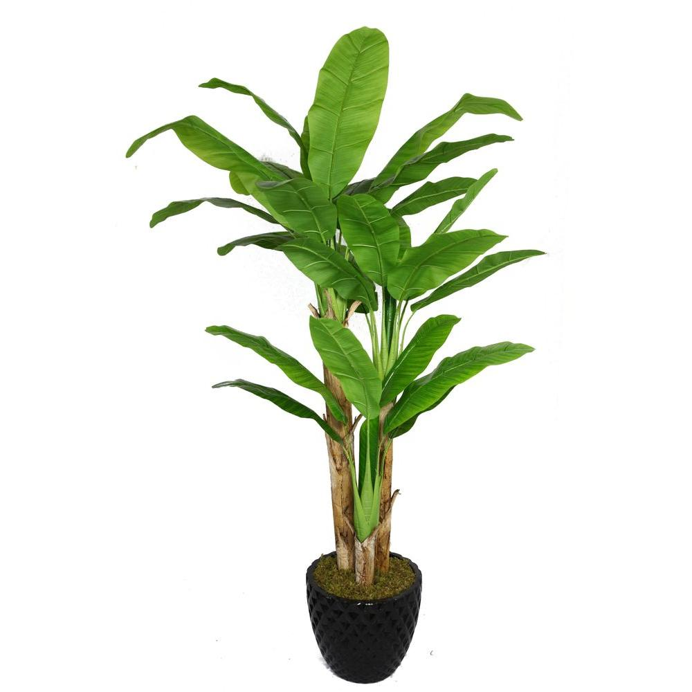 Laura ashley 78 in tall banana tree with real touch for Artificial banana leaves decoration