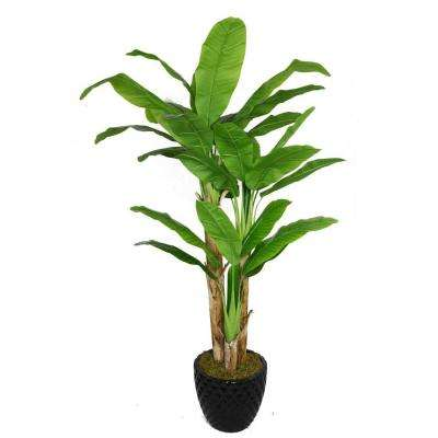 78 in. Tall Banana Tree with Real Touch Leaves in 16 in. Fiberstone Planter