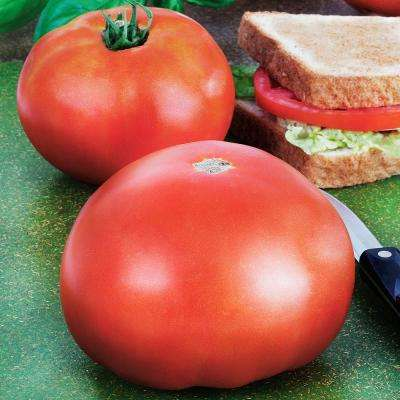 4.5 in. 19.3 oz. Tomato-Park's Whopper