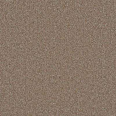 Carpet Sample - Harvest III - Color Yancey Texture 8 in. x 8 in.