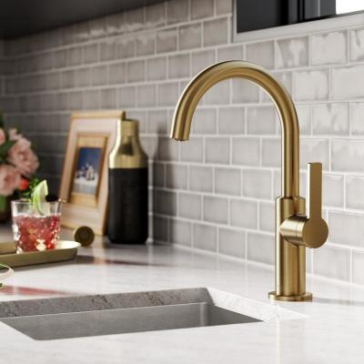 Oletto Single-Handle Kitchen Bar Faucet in Brushed Brass
