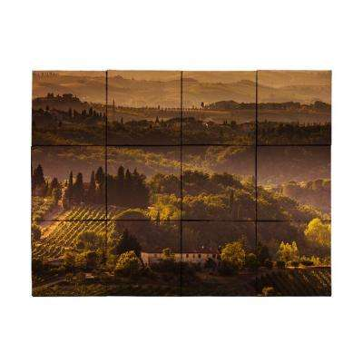 Vineyard1 18 in. x 24 in. Tumbled Marble Tiles (3 sq. ft. /case)