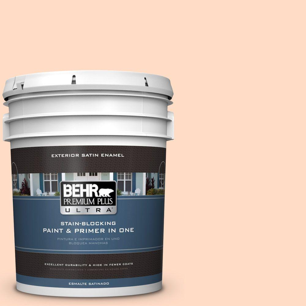 BEHR Premium Plus Ultra 5-gal. #260C-2 Salmon Creek Satin Enamel Exterior Paint