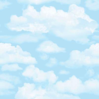 Blue and White Cloud 9 Wallpaper