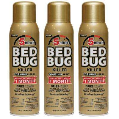 16 oz. 5-Minute Bed Bug Killer Foaming Spray/Kills All Life Stages (3-Pack)
