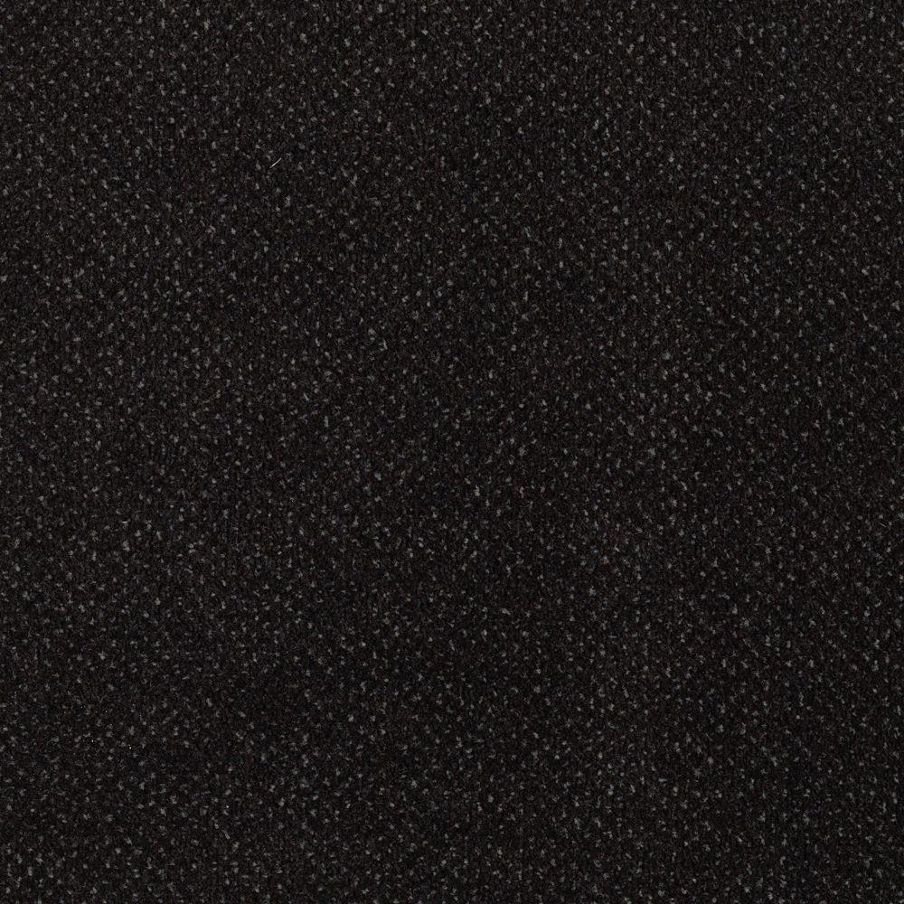 TrafficMASTER Market Share - Color Midnight Sky 12 ft. Carpet