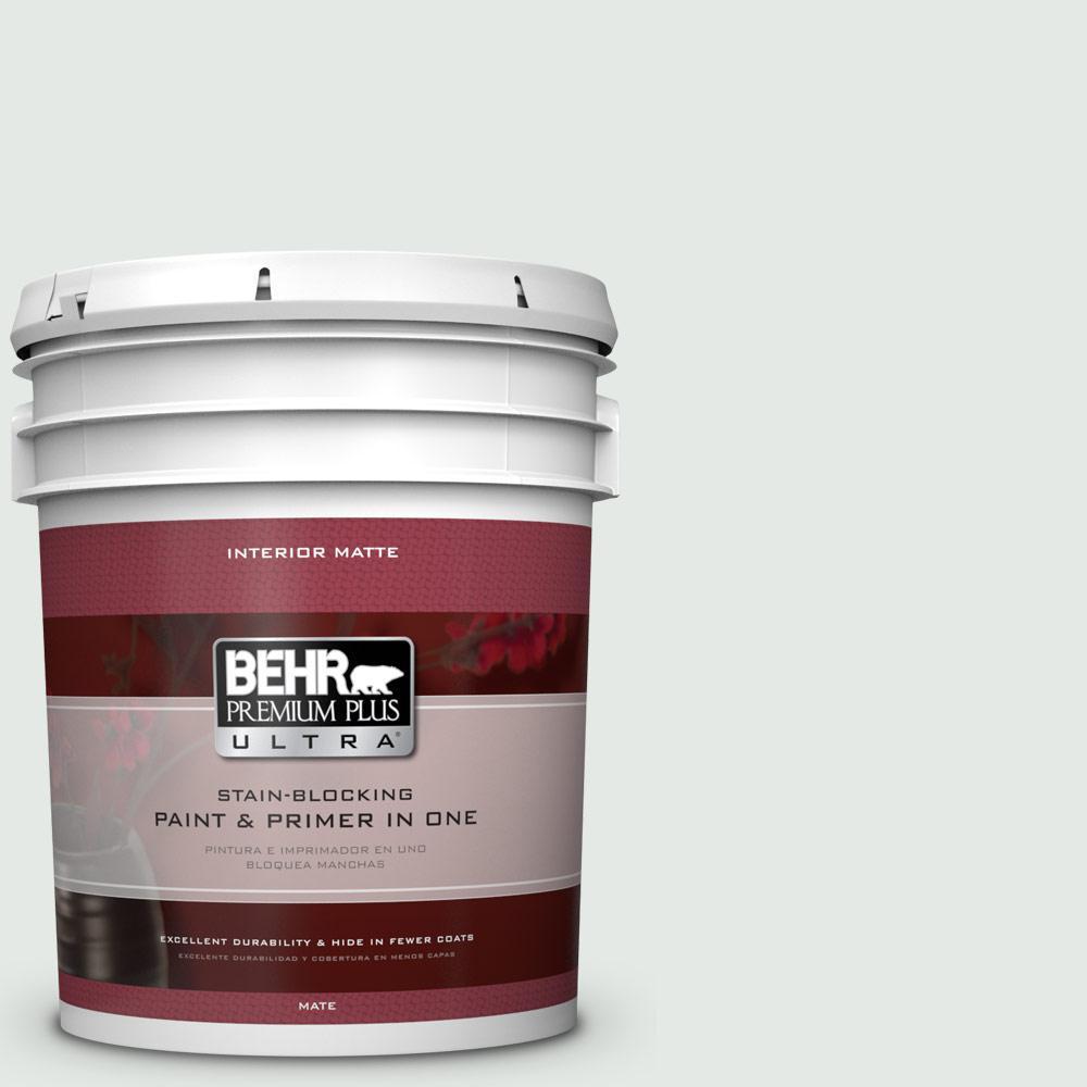 5 gal. #BL-W7 Wind Chill Matte Interior Paint