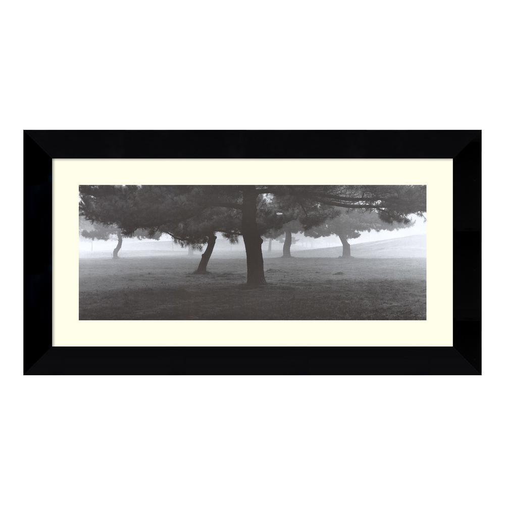 Amanti Art 25 in. W x 13 in. H 'Trees in