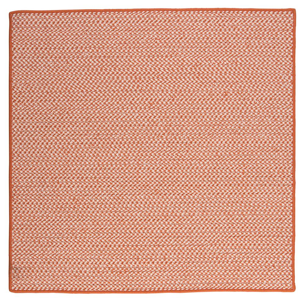 Home Decorators Collection Sadie Tangerine 8 Ft X 8 Ft Indoor Outdoor Braided Area Rug
