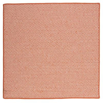 Sadie Tangerine 10 ft. x 10 ft. Indoor/Outdoor Braided Area Rug