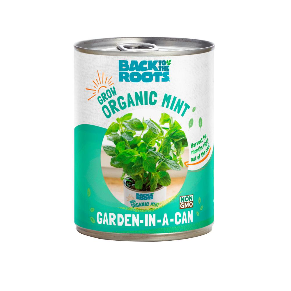 Back to the Roots Garden in a Can Organic Mint Plant