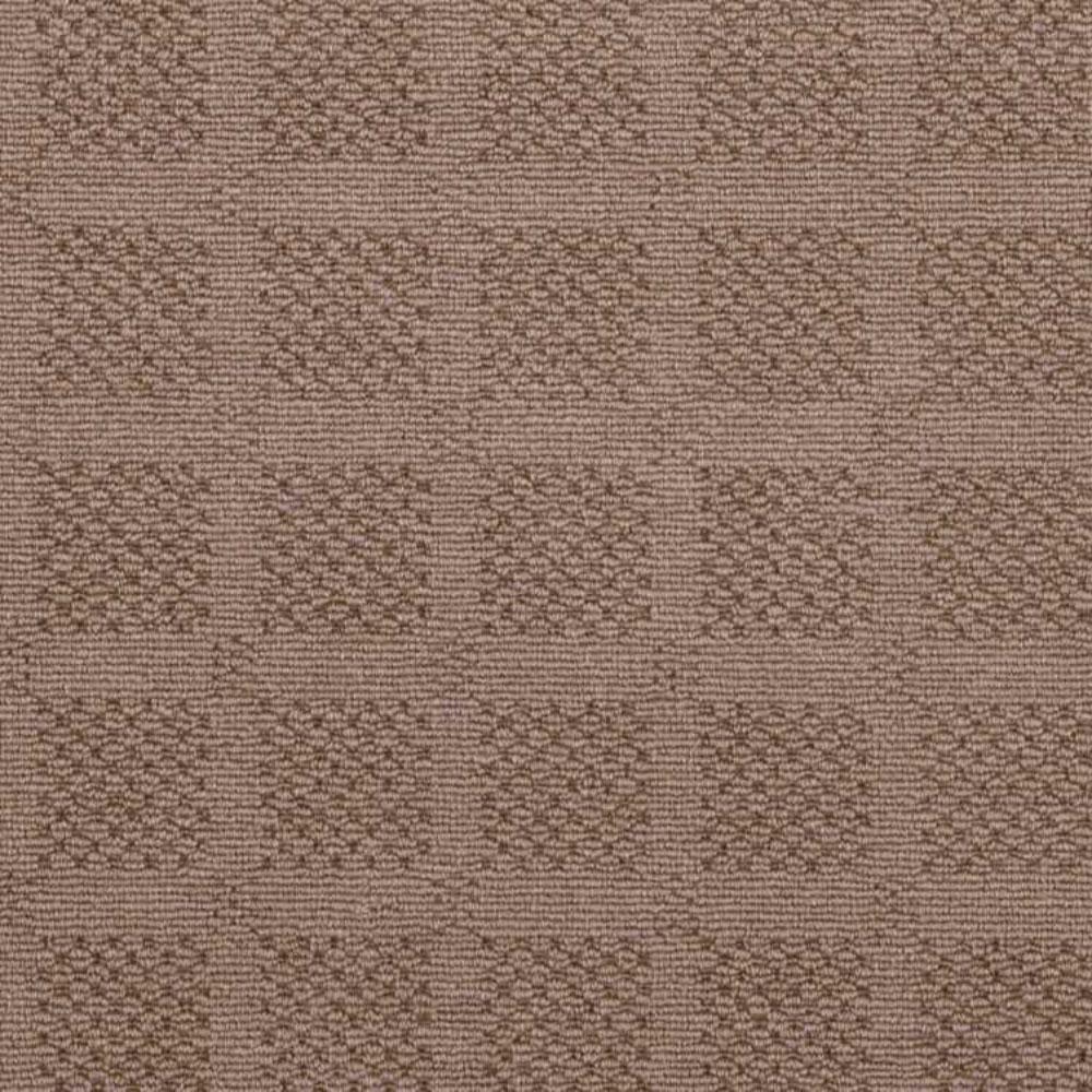 Carpet Sample - Desert Springs - Color Taupe Loop 8 in. x 8 in.