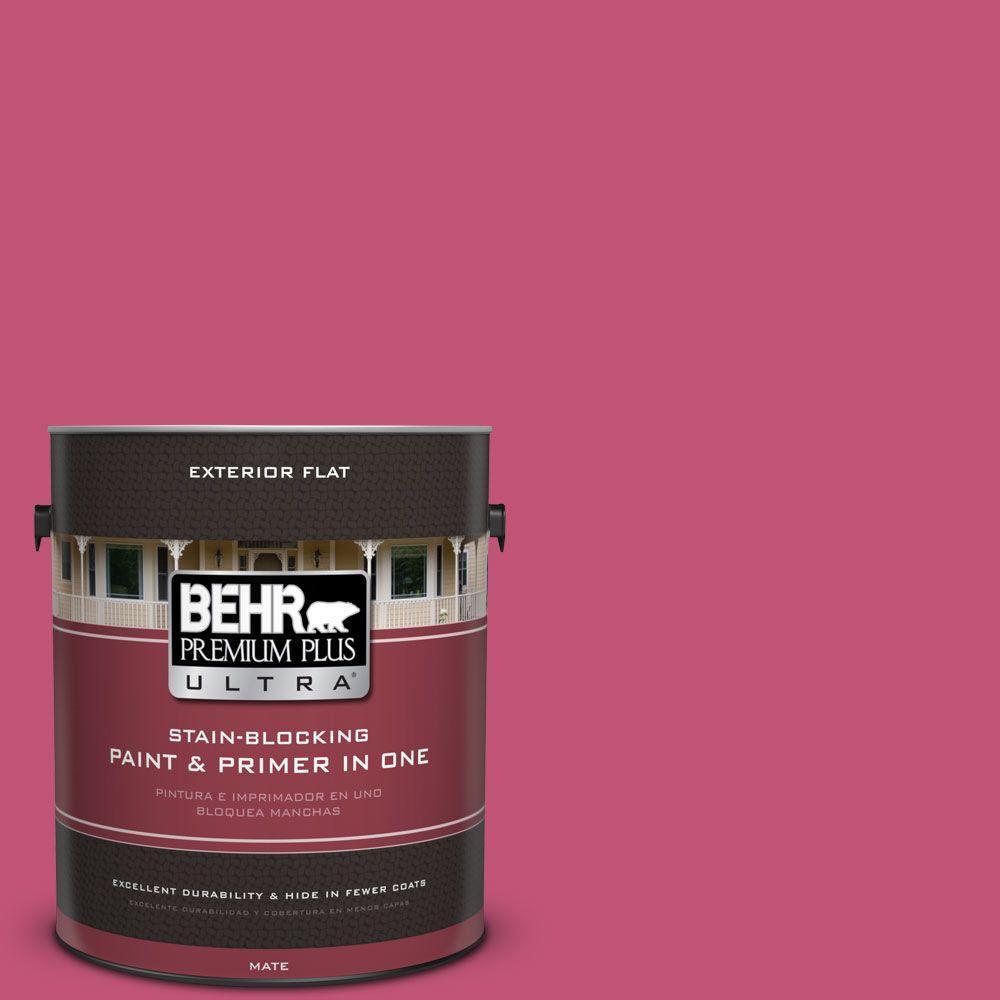 BEHR Premium Plus Ultra 1 gal. #T16-02 Pagoda Flat Exterior Paint ...