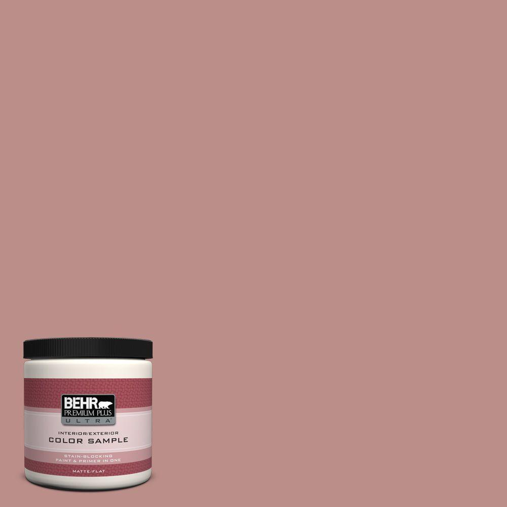 8 oz. #160F-4 Ponder Matte Interior/Exterior Paint and Primer in One