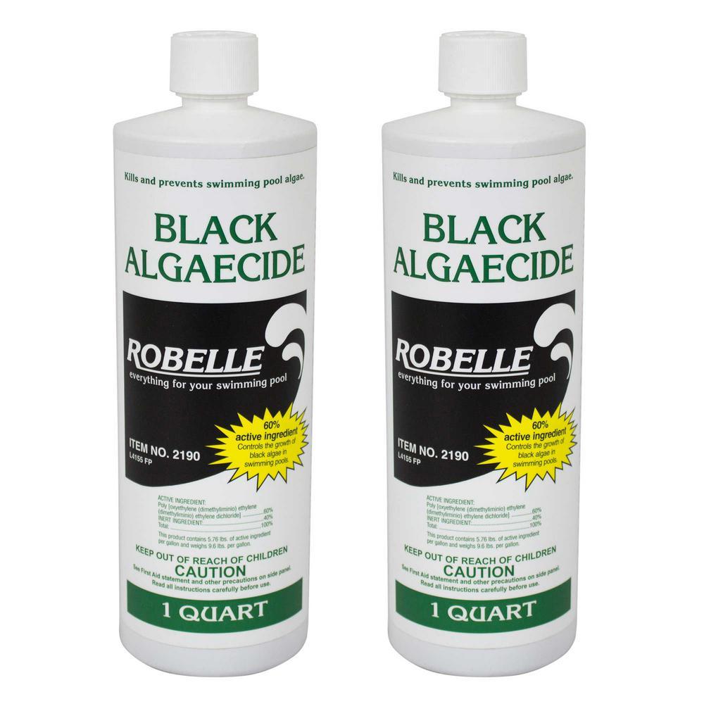 Black Algaecide for Swimming Pools 1-Quart, 2-Pack