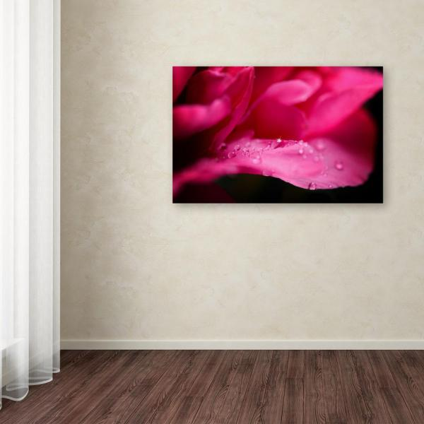 Trademark Fine Art 16 in. x 24 in. ''Peony Drops'' by