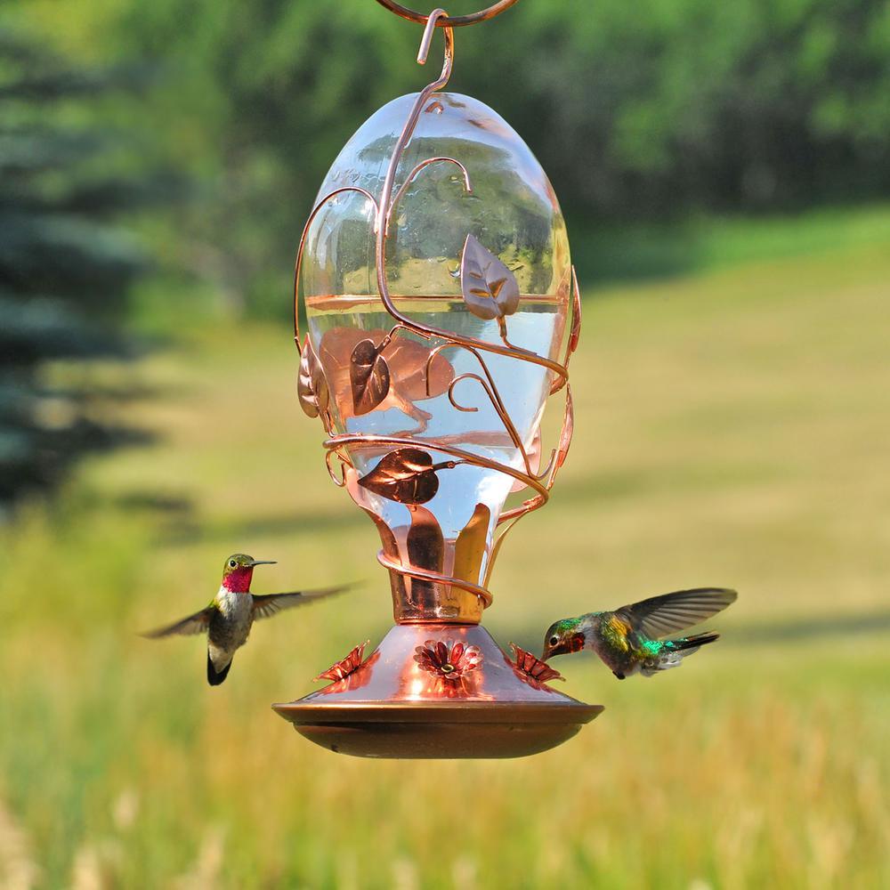 Looking Glass Hummingbird Feeder - 32 oz. Capacity