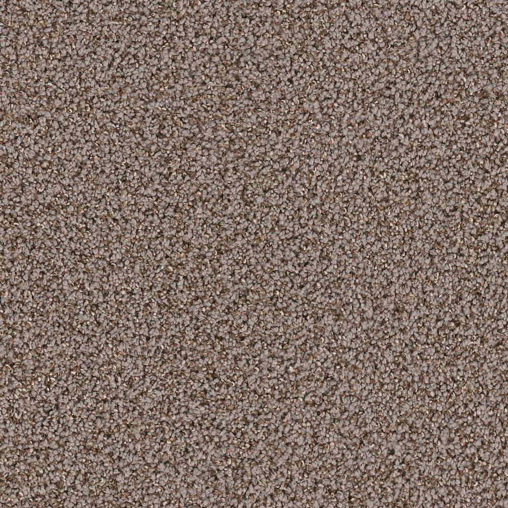 Platinum Plus Carpet Sample Gateway I Color Rowan