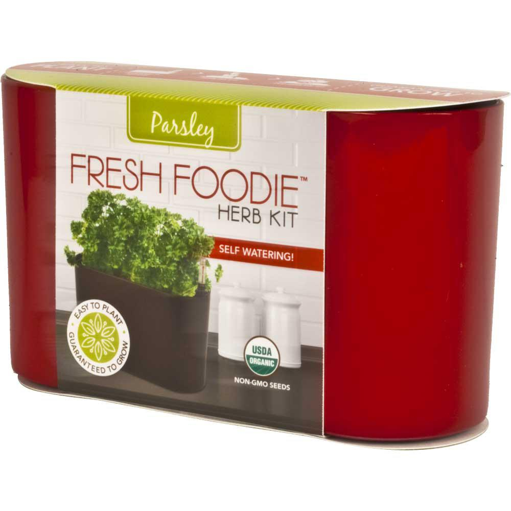 10 in. Fresh Foodie Parsley Grow Kit Red Plastic Planter