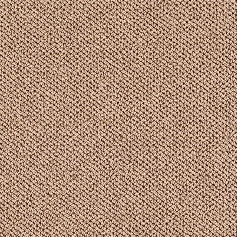 Carpet Sample - Priority - Color Torch Light Loop 8 in. x 8 in.