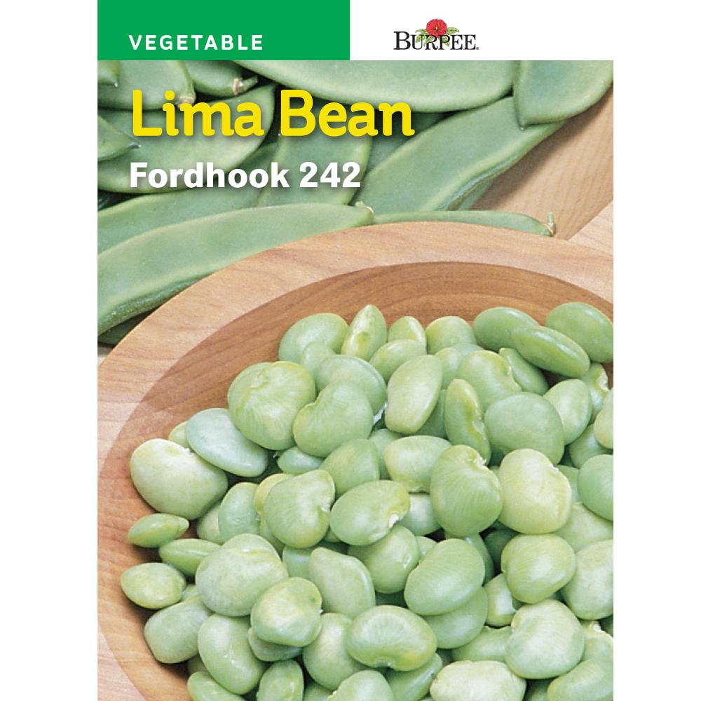 recipe: bush bean seeds home depot [8]