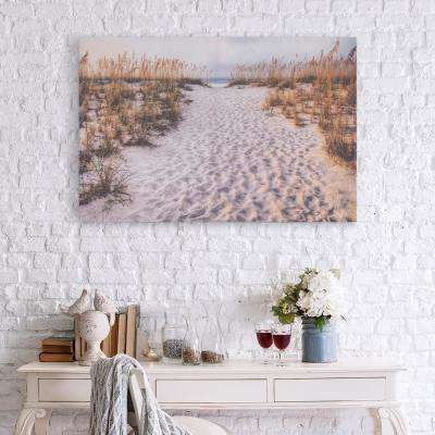 Path to the Beach Canvas Wall Art