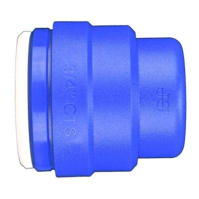 3/4 in. Blue Plastic Push-to-Connect End Cap Contractor Pack (5-Pack)